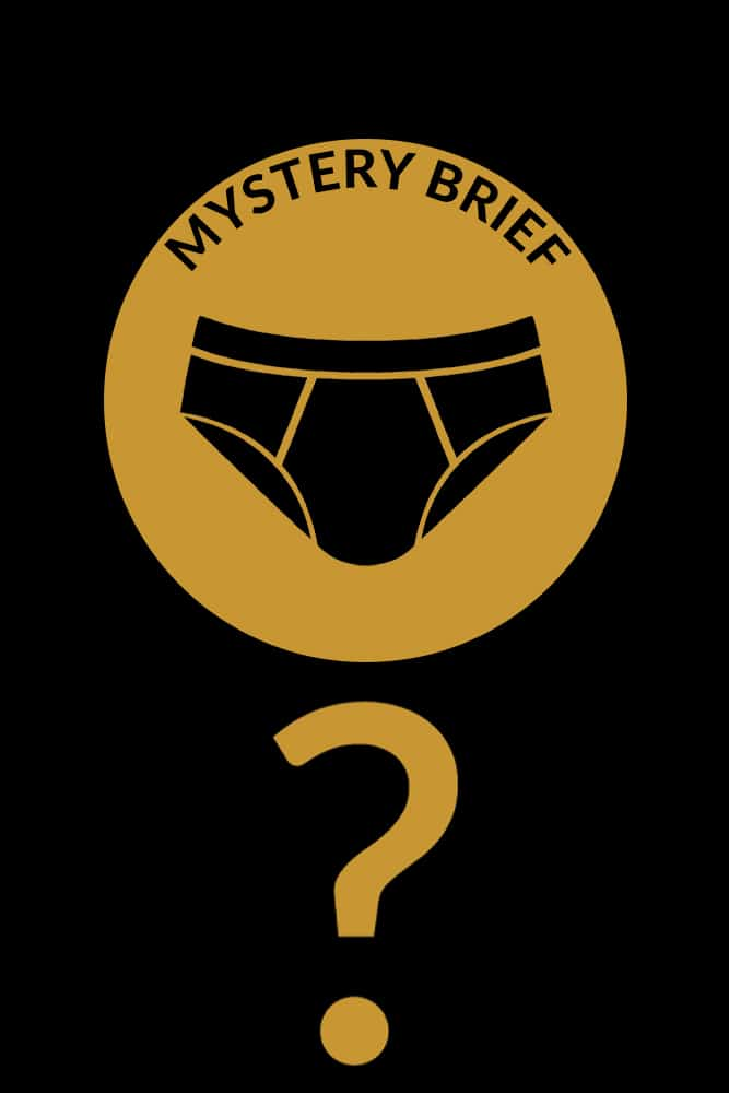 MYSTERY BRIEF