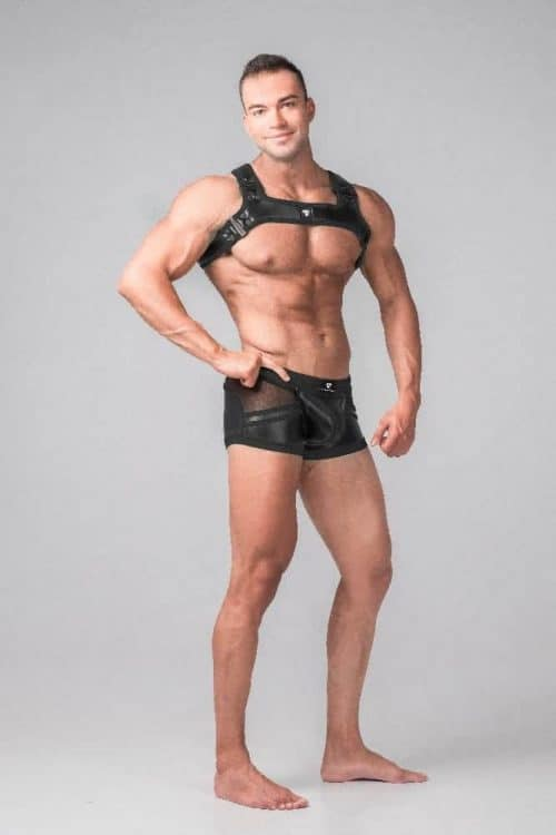 MASKULO YOUNGERO BULLDOG CHEST HARNESS
